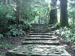 Kumano Kodo Daimonzaka Road