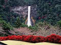 Nachi Falls / Nachi Falls