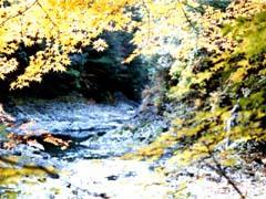 Yasukawa Valley