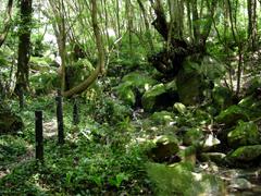 Hirose Valley