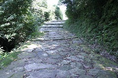 Stone pavement of the old pilgrimage road