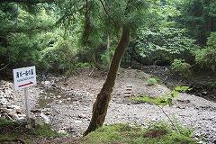 湯川一族の墓